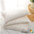 【Arnold Palmer雨傘牌】保暖發熱枕1入 (P042666726586)
