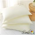 【Arnold Palmer雨傘牌】精梳棉牛奶絲柔順枕1入 (P042666726432)
