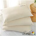 【Arnold Palmer雨傘牌】細緻雪芙蓉舒適枕2入 (P042666725983)