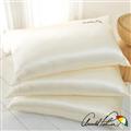 【Arnold Palmer雨傘牌】珍珠絲超柔保溫枕1入 (P042666725546)
