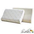 【Arnold Palmer雨傘牌】人體工學乳膠枕1入 (P042666723434)