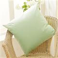 【床之戀】雙面防潑水舒適方型抱枕48x48cm-嫩芽綠 (MG0145G)