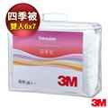 【3M】Thinsulate可水洗四季被Z250雙人(6x7) (7000027681)