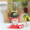 【迎光生技】耶誕老人多肉綠苔球 (4712176825290)