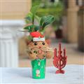 【迎光生技】幸福耶誕老人苔球 (4712176825238)