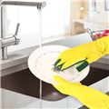 全能去污王 多功能好清潔右手菜瓜布手套1雙 (MP0293)