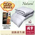 鴻宇HongYew MARTONEER系列頂級竹炭黑鑽養生被-雙人(6x7尺) 送光電子保暖衣2件
