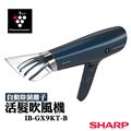 夏普SHARP 負離子吹風機(送陶瓷杯(3入) (E-IB-GX9KT-B)