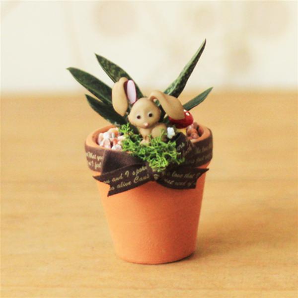 【迎光生技】超萌動物多肉陶盆-兔子擺飾 (4712176824927)